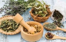 Etapes de la vida de la dona lligades al seu cos i les plantes medicinals