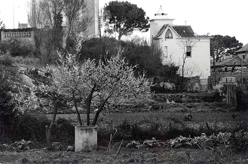Jordi Mestre Vergés. Casa Unal. 23/03/1983.